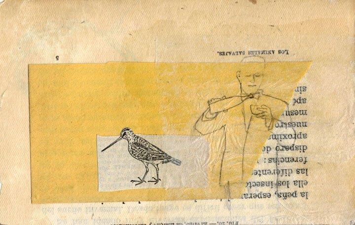 Armonako liburu zahar batetan collage eta marrazkiak