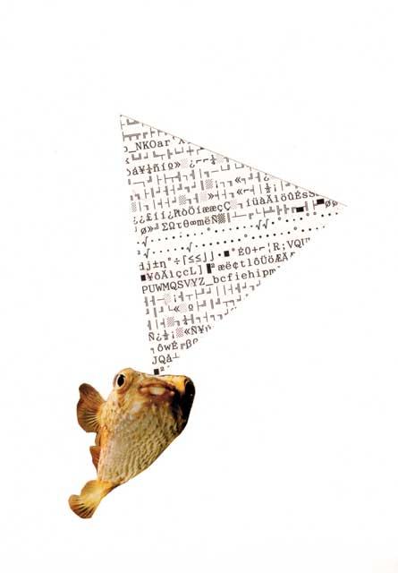 collage kodearrainak puxika arraina- bigara
