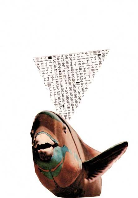 collage kodearrainak loro arraina - bigara