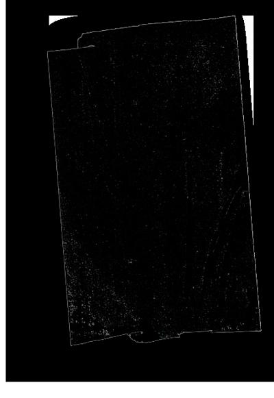 collage eta ikus poesia - bigara
